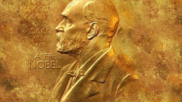 Physik-Nobelpreis geht an drei Astrophysiker für Forschung zur Evolution des Universums