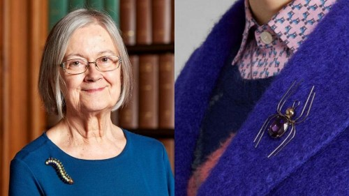 Baroness of Brooches: are Lady Hale's pins more than just jewellery?