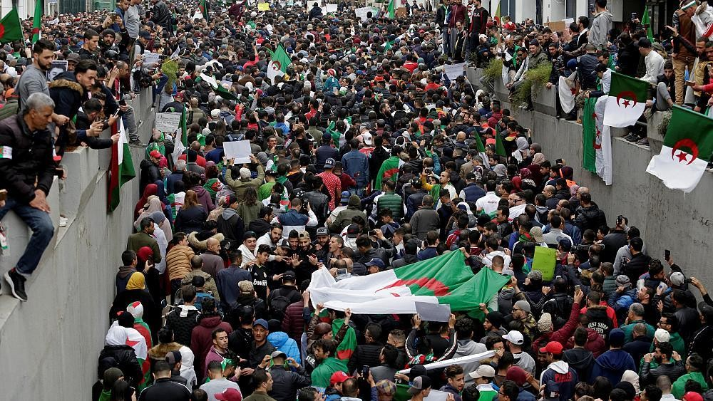 الحراك في الجزائر cover image