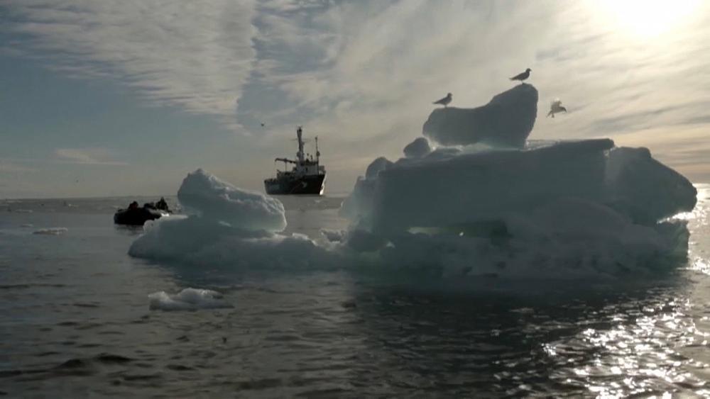 Erderwärmung und Klimawandel - cover