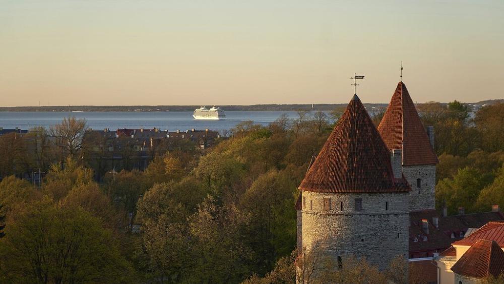 """Estonie : un e-visa pour attirer les """"nomades numériques"""""""