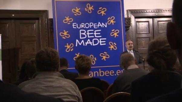 La Hongrie appelle l'UE à protéger ses abeilles et lance du miel 100 % européen