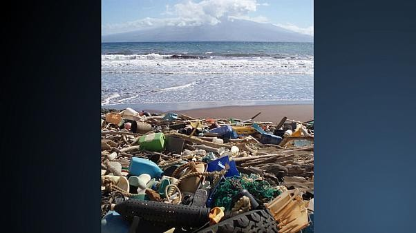 Great Pacific Garbage Patch 'now three times the size of France'