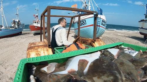 Danimarca: il boom della pesca artigianale
