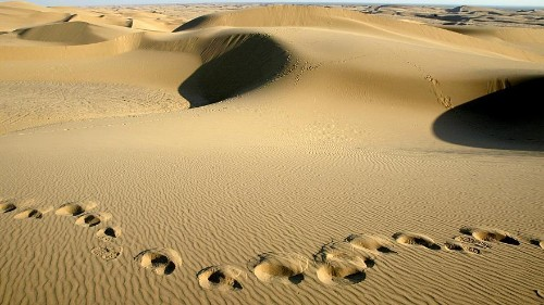 To cool the planet, should deserts be flooded?