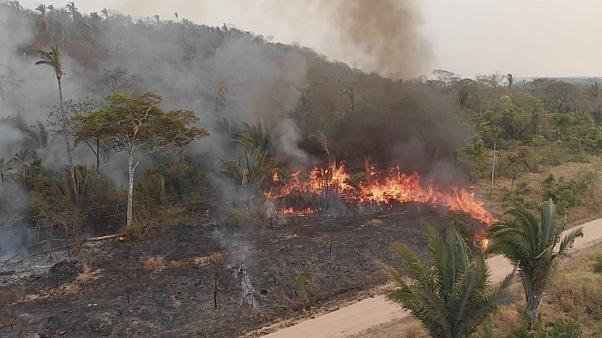 Incendi in Amazzonia: 12 milioni di ettari in fumo. La Bolivia riceve gli aiuti europei