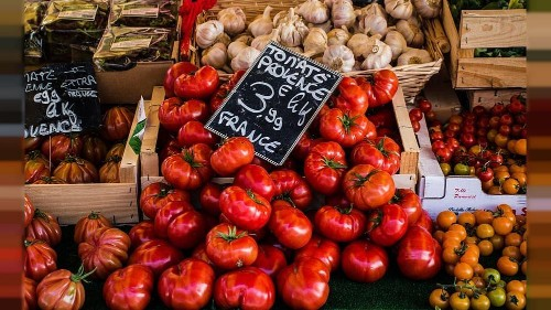 France's entire tomato stock under threat from deadly virus