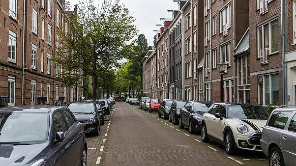 Netherlands to reduce national speed limit to combat nitrogen pollution
