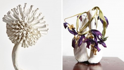 Bones to beauty – the artist reclaiming waste as art