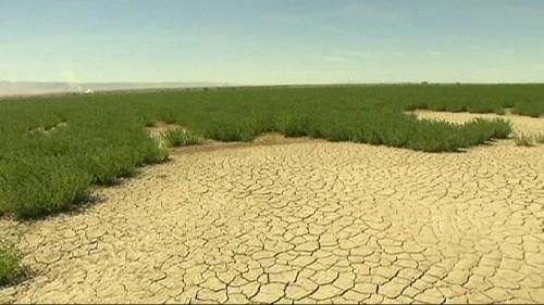 Água cada vez mais escassa