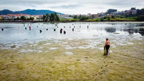 Fischereisektor: Frauen erobern Männerdomäne