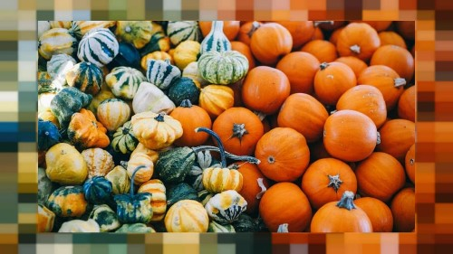 Halloween: The nightmarish statistics of this holiday's food waste