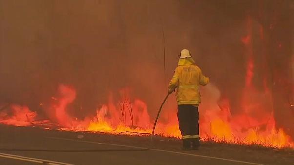 أستراليا: إلغاء الجولة الأخيرة من بطولة العالم للراليات بسبب الحرائق
