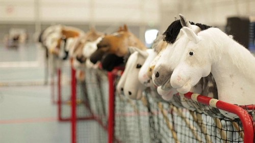 Watch: High stakes at Finland's Hobby Horse Championships