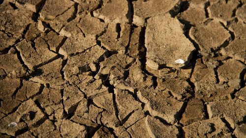 The voices of rural people most affected by the climate crisis are being drowned out ǀ View