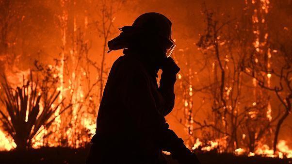 Les pompiers d'Australie vaincus par un énorme brasier, né de huit incendies