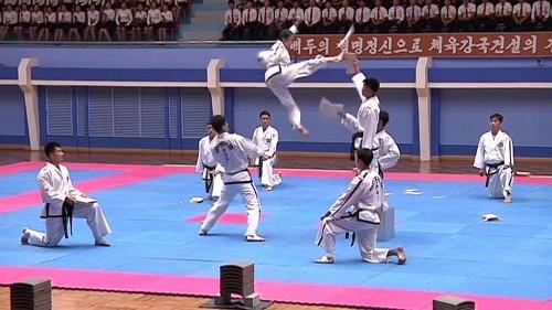 Internationales Kampfsport-Treffen in Pjöngjang
