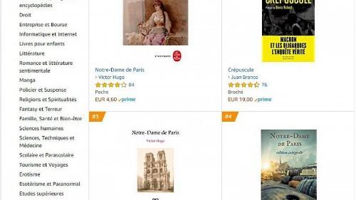 """Après l'incendie, """"Notre-Dame de Paris"""" de Victor Hugo en tête des ventes de livres"""