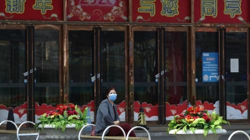 Tod nach Infektion mit Hantavirus in China sorgt für Hysterie