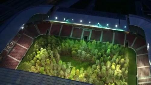 En Autriche, un terrain de foot transformé en forêt