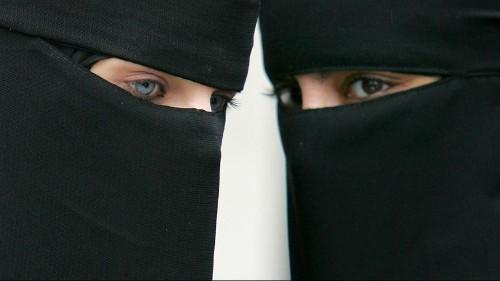 Germany approves partial burqa ban