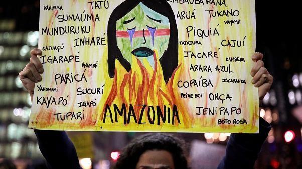 Nas ruas pela preservação da Amazónia