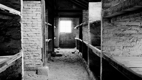 Panoramic film photographs of Auschwitz camp tell the story of mass killing