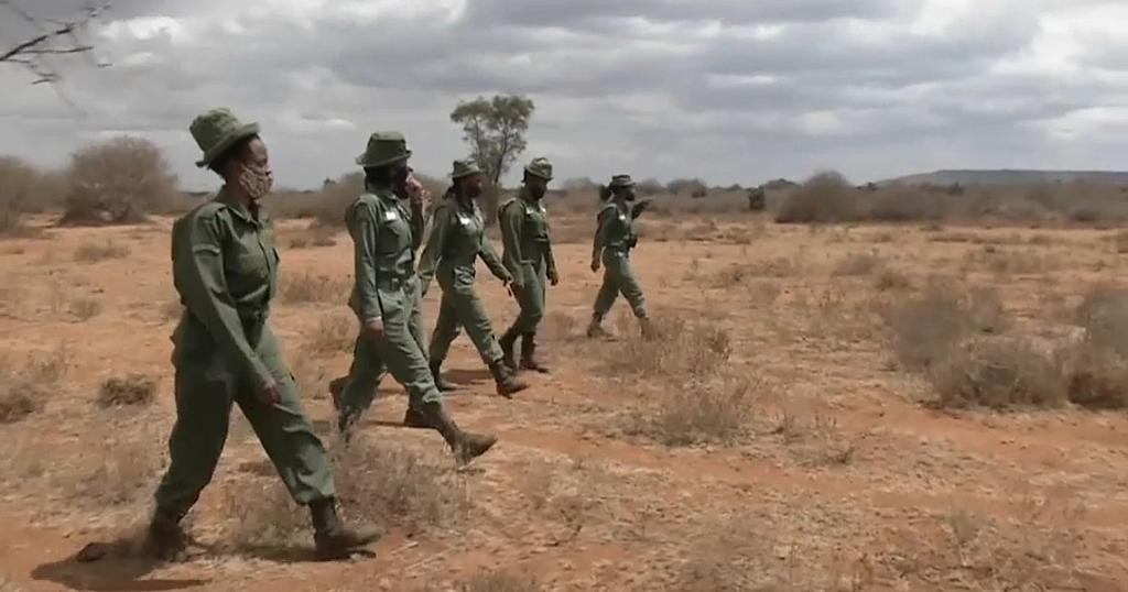 Team Lioness: Kenya's All-Female Park Rangers | Africanews