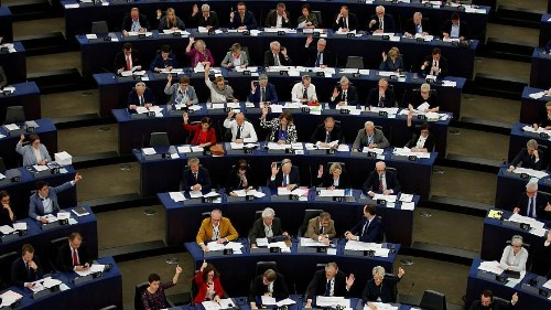 What do newly elected MEPs do until Parliament begins?   Euronews answers