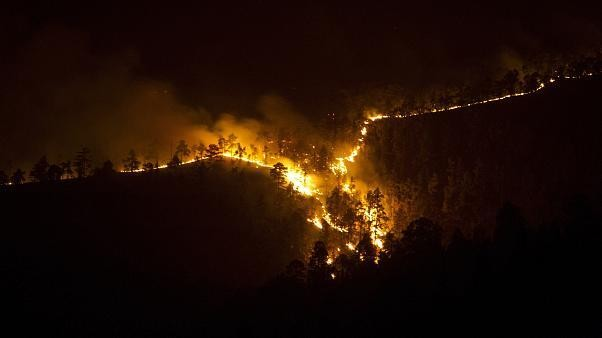 Wildfire rages through 900 hectares of forest in Spain's Canary Islands