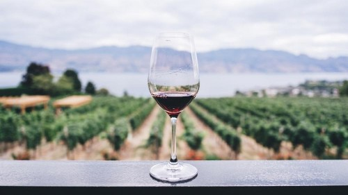 The wine producing nation you may not be familiar with