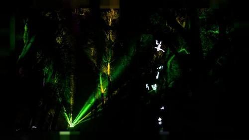 Lichterfest in Lyon: Tradition geht aufs 19. Jahrhundert zurück