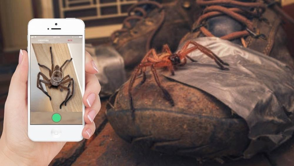 This new app will protect you from deadly snakes and spiders