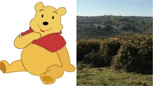 A blaze burnt a small portion of Winnie the Pooh's forest