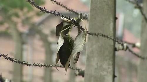 Auschwitz: KZ wird zum 75. Jahrestag aufwändig restauriert