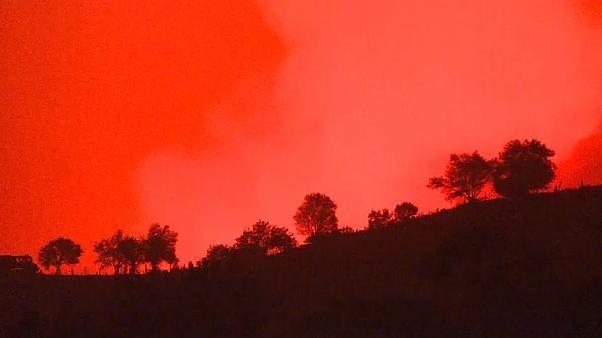 Türkei: Waldbrände vernichten 100 Hektar Wald