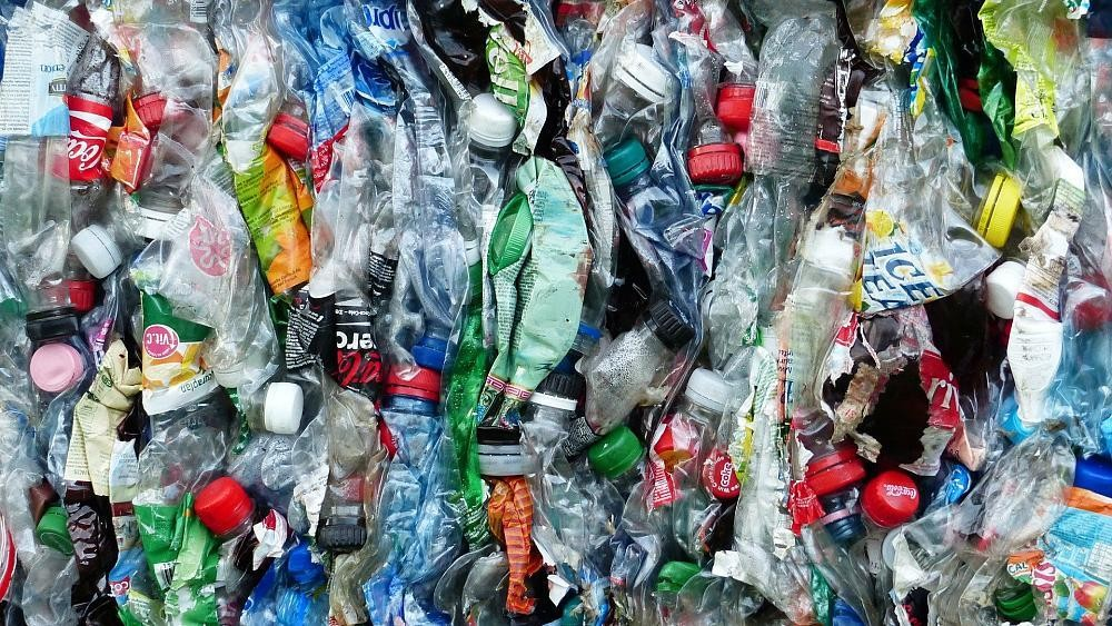 New Plastic Waste cover image