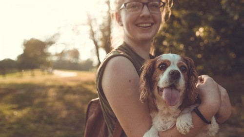 Animals – can you eat one and cuddle the other? The owners spoiling their pets
