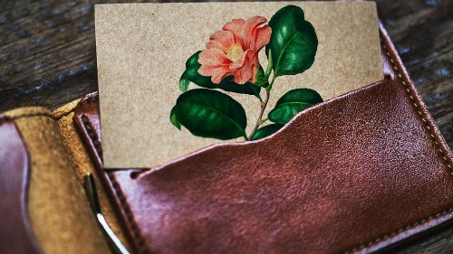 Grape skin leather is one of the alternatives.