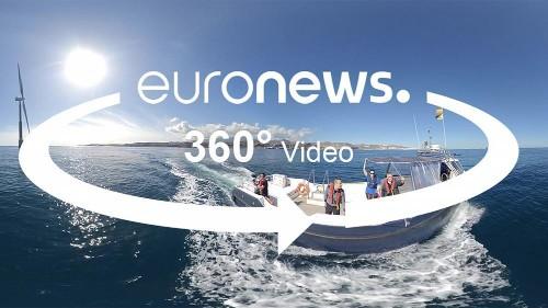 Maritime Raumplanung: Wirtschaftsinteressen und Naturschutz verbinden