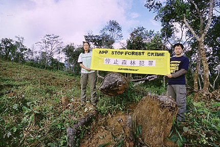 Paper Giant Sinar Mas to Greenpeace: Stop Targeting Developing Countries