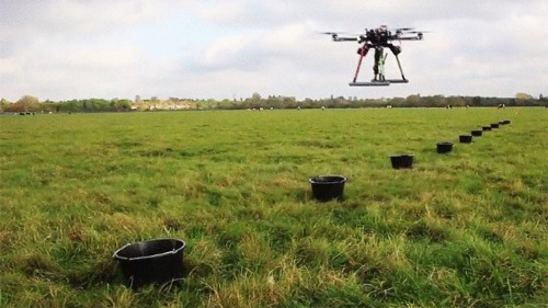 These Tree-Planting Drones Are About To Start An Entire Forest From The Sky