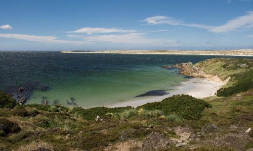 Argentina urges UK to return to negotiating table over Falkland Islands
