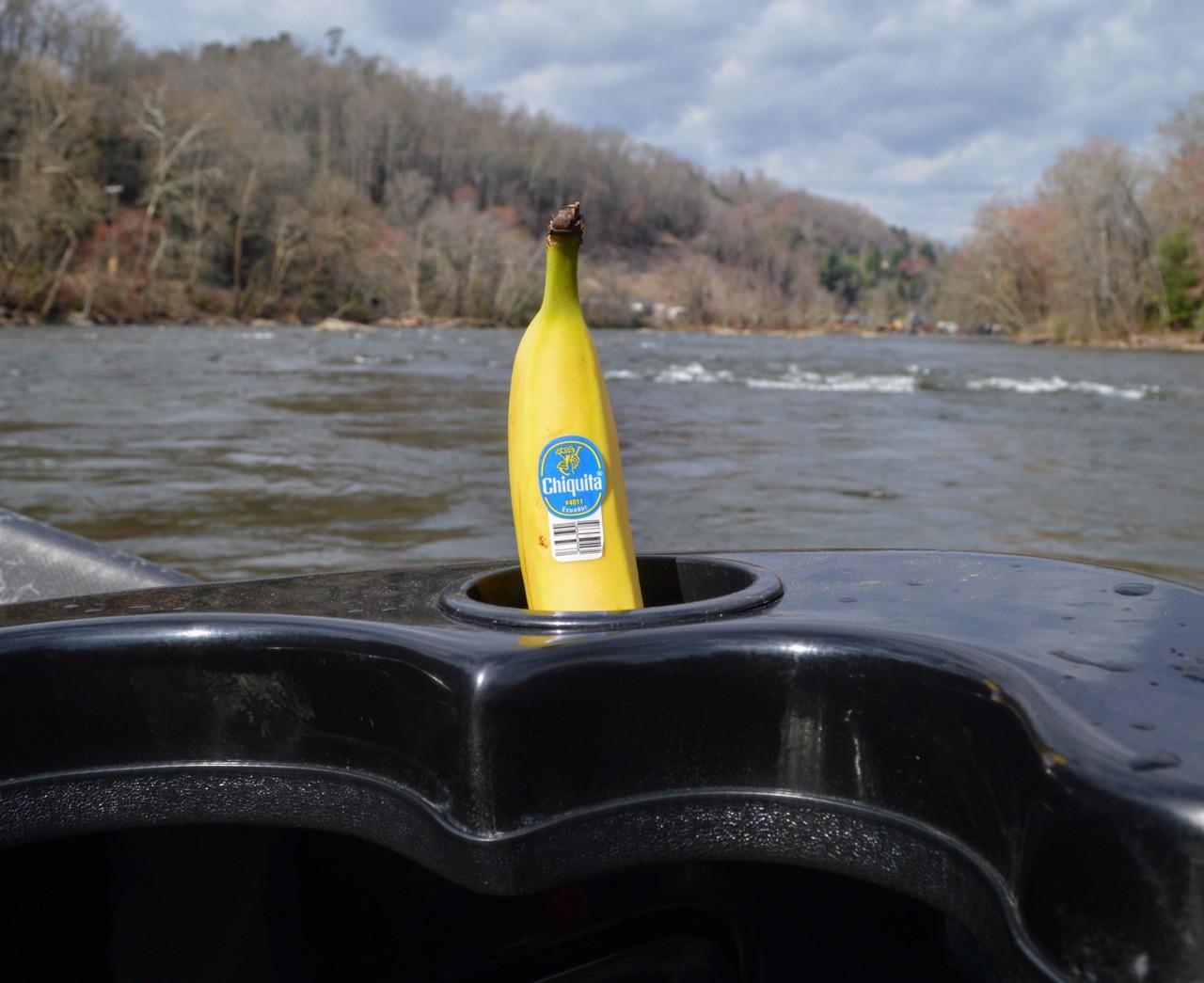 Chiquita banana riding shotgun in the drift boat while fly fishing the Tuckasegee River in North Carolina