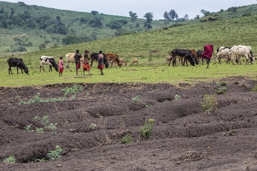 Effects of Climate Change - Agriculture