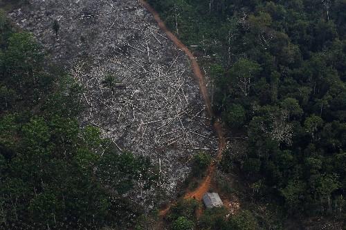 Major donor Norway frets over Brazil deforestation