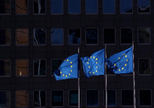 EU states step in where trade credit insurers fear to tread