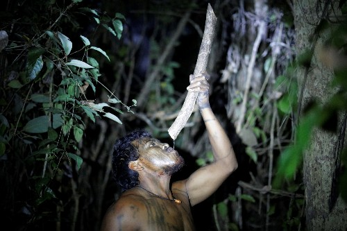 Illegal loggers kill Amazon indigenous warrior who guarded forest, wound another