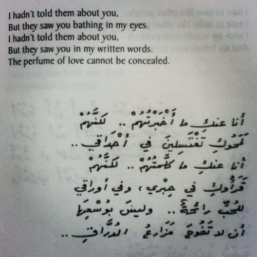 فرفشه - cover