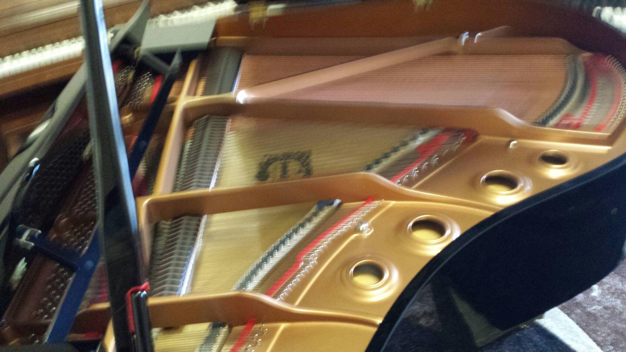 GC1PE duplex scaleing grand piano